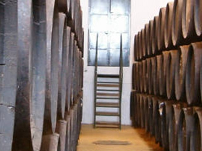 7 Days Wine and Food Tours Spain