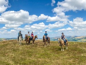 4 Days First-rate Welsh Prince Trail Horse Riding Holiday in the Wye Valley, United Kingdom