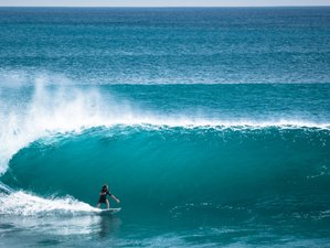 8 Days Yoga and Surf Guiding for Intermediate and Advanced in Canggu, Bali
