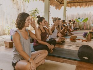 24 Day 200hr Hatha, Vinyasa, Yin, Restorative & Meditation Yoga Teacher Training in Bali
