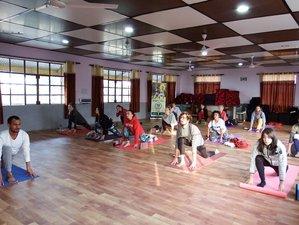 26-Daagse 200-urige Yoga Docentenopleiding in Dharamsala, India