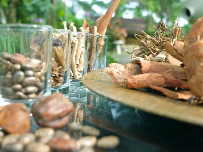 8-Daagse Basis Ayurveda Cursus met Meditatie en Yoga Retraite in Kalutara, Sri Lanka
