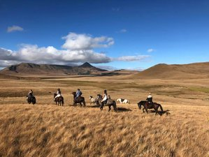 4 Days Horse Riding Holiday and Safari Experience in Southern Drakensberg, South Africa