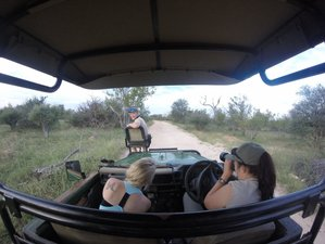 4 Days Lodge and Treehouse Kruger Park Safari in South Africa
