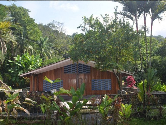 7 Days Jungle Conservation and Yoga Retreat in Costa Rica