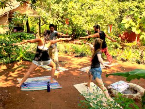 7 Tage Yoga Retreat und Reiki Retreat in Goa, Indien