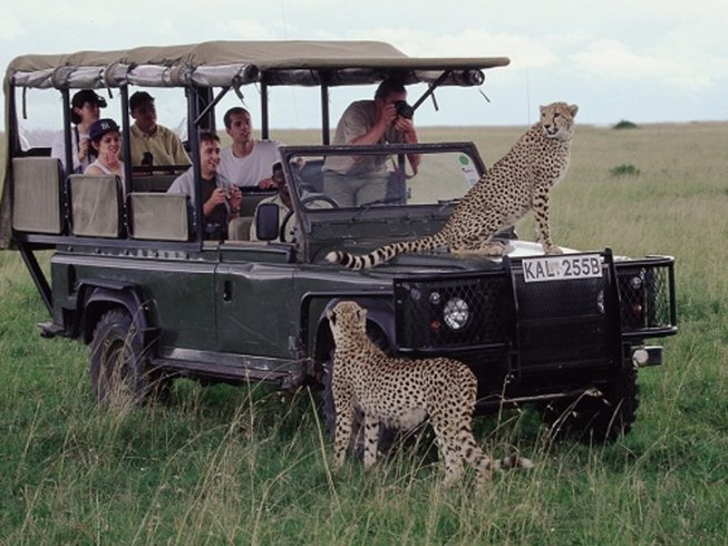 3 Days Maasai Mara Budget Safari in Kenya