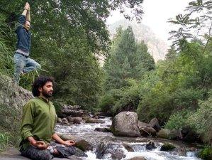 6 Days Refreshing Waterfall Hiking Yoga Holiday in Himalayas India