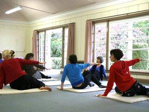 4 Days Hatha Vinyasa Yoga Retreat in Auckland, NZ