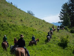 8 Days Captivating Ranch Vacation in Washington, USA