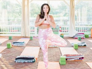 4 Day Wine, Hiking, and Yoga Retreat in Afton, Virginia