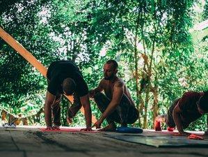 3 Days Private Ayahuasca, Spiritual and Yoga Retreat in the Amazon Jungle, Ecuador