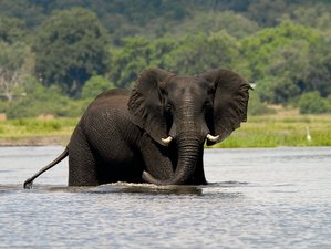 5 Days River Safari in Victoria Falls