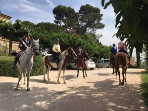 5 Day Wine Tour and Horse Riding Holiday in Spoleto, Italy