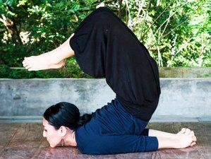 15 días inspirador retiro de yoga en Kandy, Sri Lanka