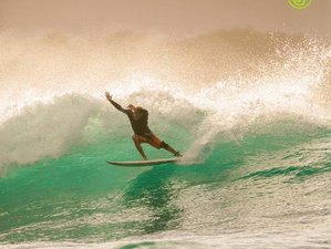 7 Day Intensive Surf Camp in Puerto Plata