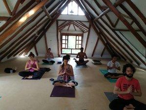 14 Days 200-Hour Tantra  & Vinyasa Yoga Teacher Training in Cancún, Mexico