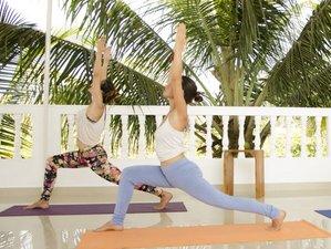 46 Tage 500 Stunden umfassende Yoga-Ausbildung Goa, Indien