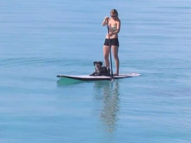 7 Days Yoga & SUP Camp in Tamraght, Morocco