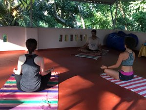 5 Days Meditation and Yoga Retreat in Kerala India