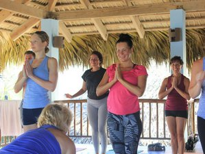 8 Days Yoga Retreat in Caribbean