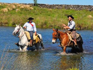 8 Days The Gaucho Trail Horse Riding Holiday in Santa Catarina, Brazil