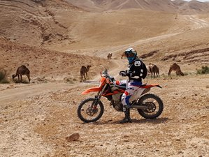 7 Day Cultural Experience and Desert Enduro Guided Motorcycle Tour in Israel