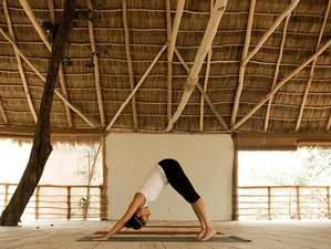 8 Days Healing Touch Yoga Retreat in Mexico