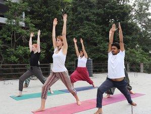 21 Day 200-Hour Hatha Yoga Teacher Training Course in Rishikesh