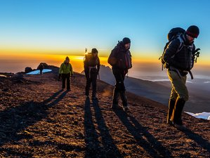 9 Days Machame Route Hiking