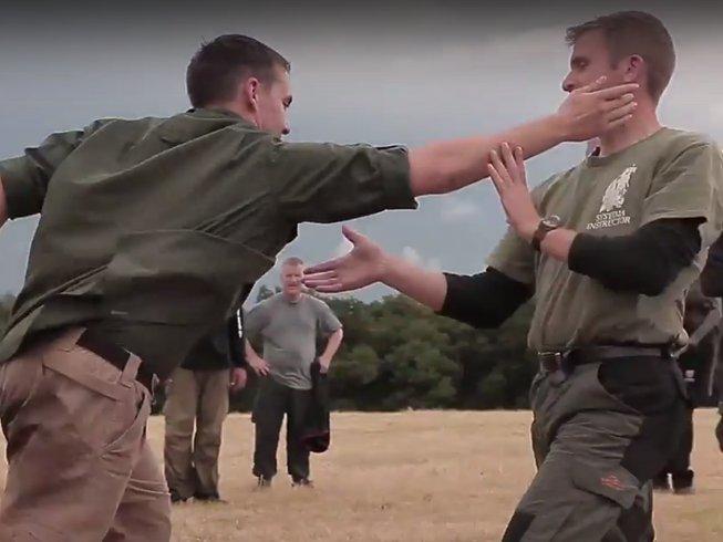 4 Days Systema Camp in Wiltshire, United Kingdom