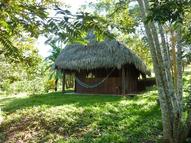 4-Daagse Amazon Reiki Niveau 1 Initiatie & Yoga Retraite in Tarapoto, Peru