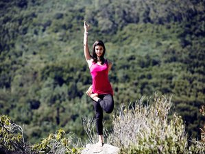 8 Days Surfari and Yoga Holiday in Sintra, Portugal