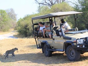 13 Days Walking Safari in Botswana and Zimbabwe