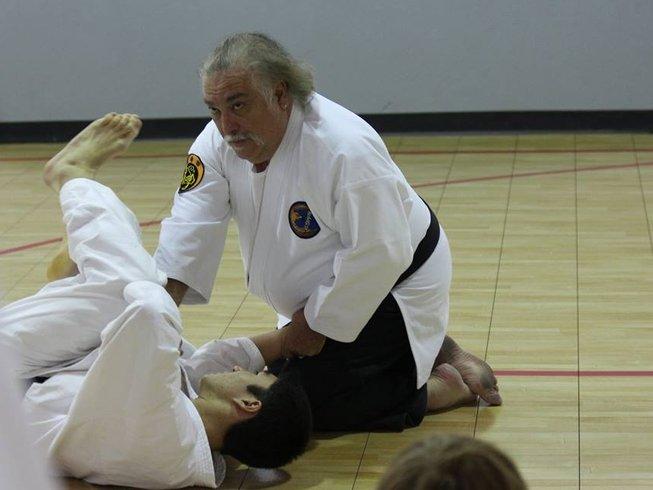 3 Days Summer Karate Training Camp in California, USA