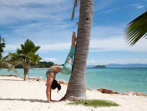 28 Days 200hr Intensive Yoga Teacher Training in Thailand