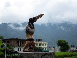 21 Day 200-Hour Vinyasa Yoga Teacher Training Course Rishikesh
