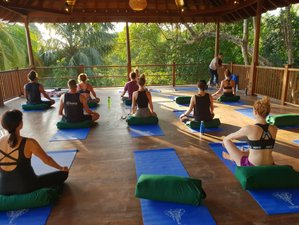 8 Day Surf, Meditation, and Yoga Holiday in Hiriketiya, Southern Province