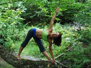 8 Days Refreshing Yoga Retreat Costa Rica