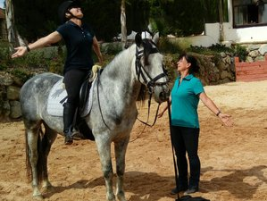 3 Day Tune in to the Age of Aquarius. Yoga, Meditation, Awareness, Detox and Horseriding in Malaga
