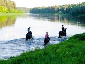 2 Days Short Horse Riding Holiday in Alytus Area, Lithuania