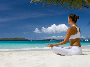 35 Days Ultimate Transformation Retreat with Detox, Wellness, and Yoga in Koh Samui, Thailand