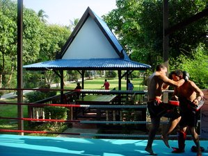 30 Days Muay Thai Training in Bangkok, Thailand