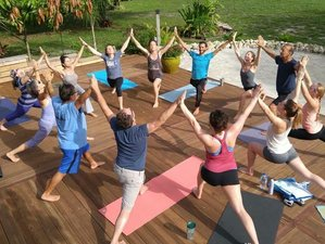 21 Days 200hr Yoga Teacher Training in Florida, USA
