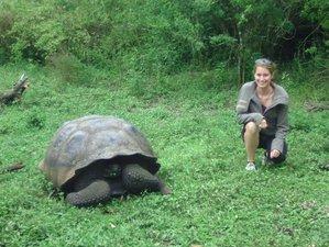 8 Day Island Hopping Wildlife Tour in Galapagos, Ecuador