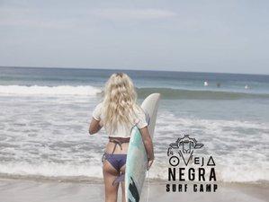 3 Day Beginners Mini Surf Camp in Tamarindo, Guanacaste