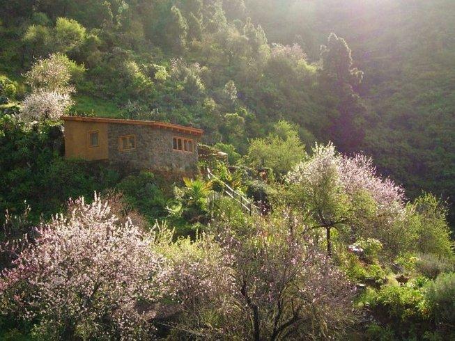 15 Tage Intensive Reinigung und Detox mit Rohkost und Yoga in der Oase Vidyamor auf La Palma