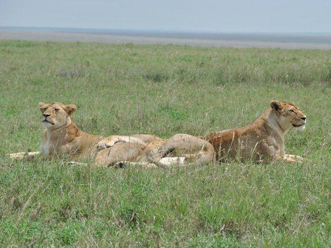 6 Days Big Five Safari in Tanzania