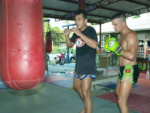 2 Month Koh Phangan Muay Thai Camp in Surat Thani