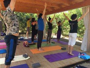 8 Day Wellness Week in Nardo, Salento